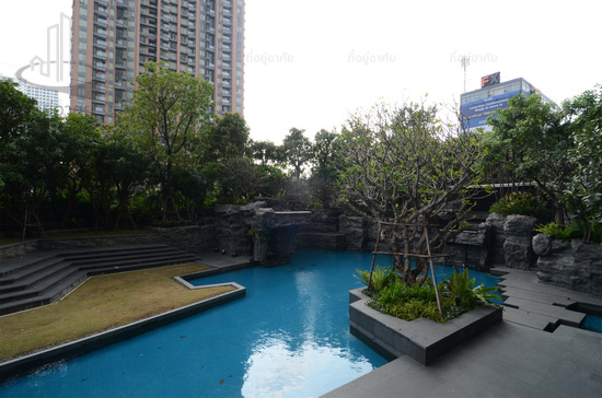One bedroom condo for rent in Asoke - Pool
